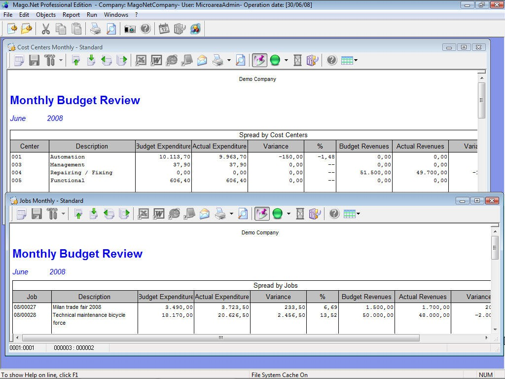 Monthly budget review
